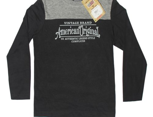Boys Long Sleeve Printed T-shirt_American Eagle